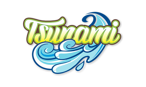 Tsunami Wave Pool